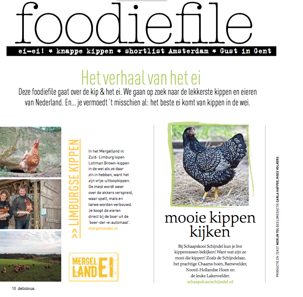 publicatie in delicious april 2017